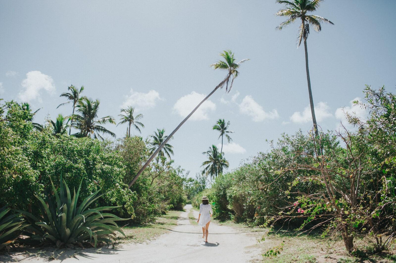 explore the bahamas