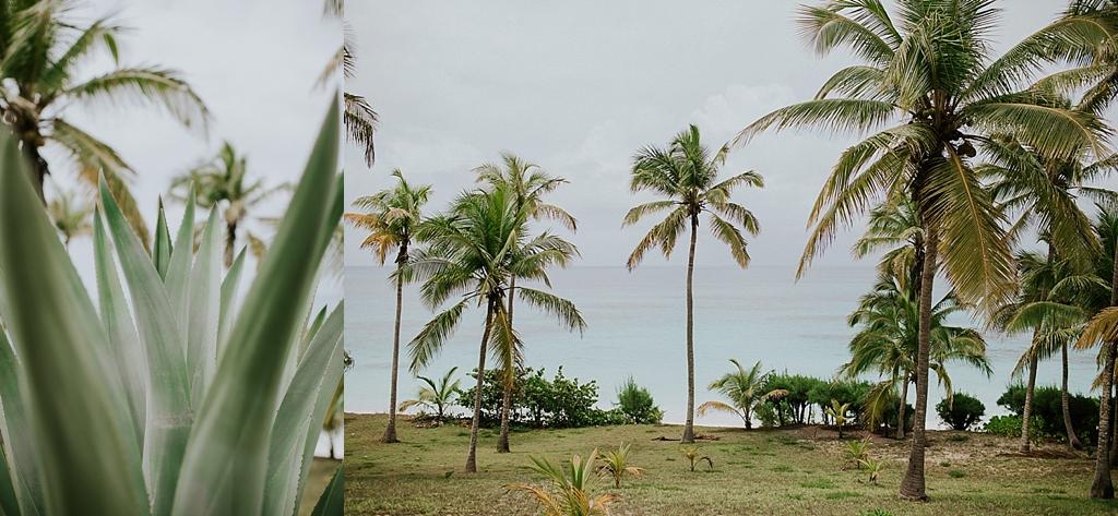 Helios House Eluethera Bahamas