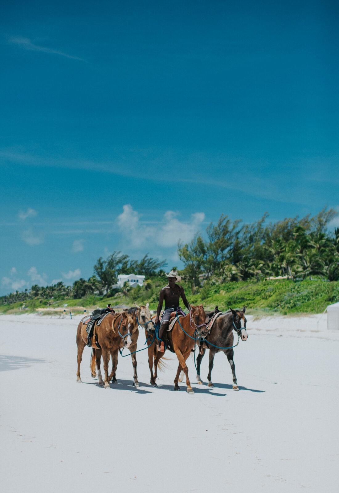 horseback riding harbour island