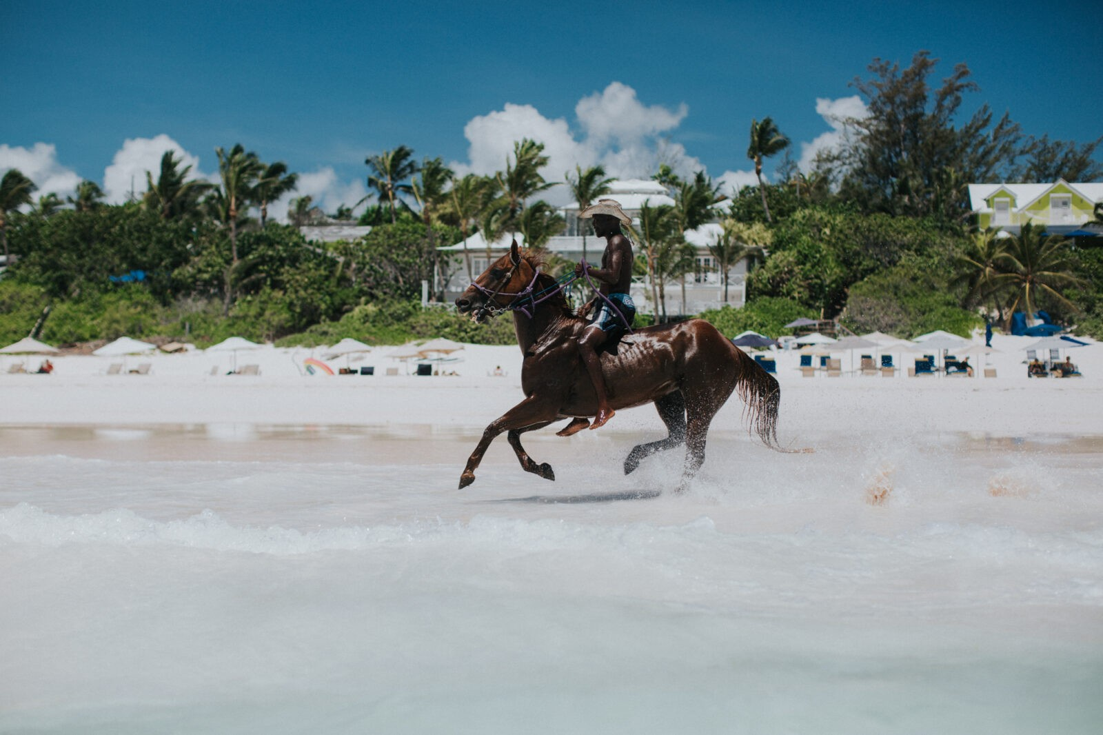 horseback riding harbour island